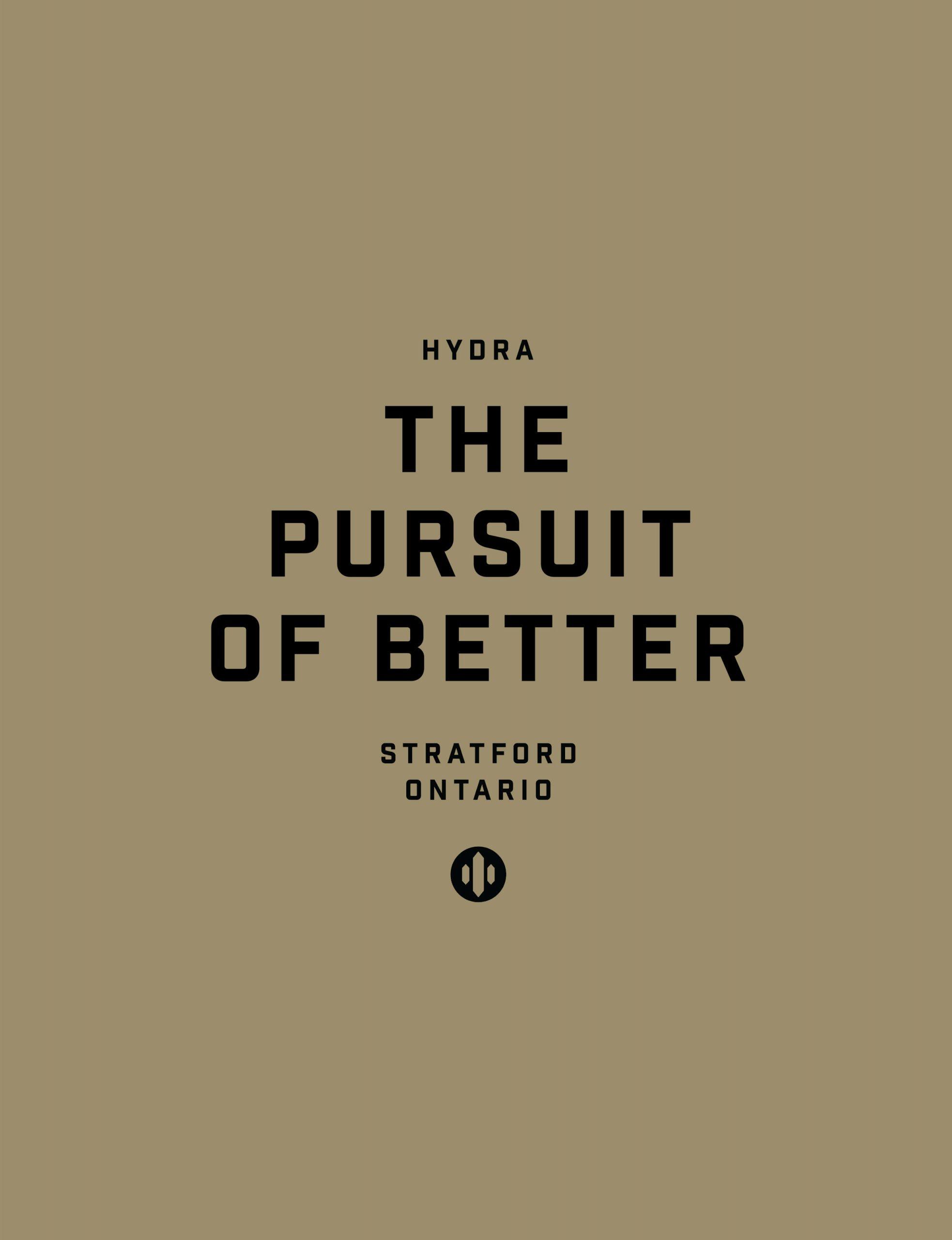 Hydra-Branding_Portfolio_Portrait_01