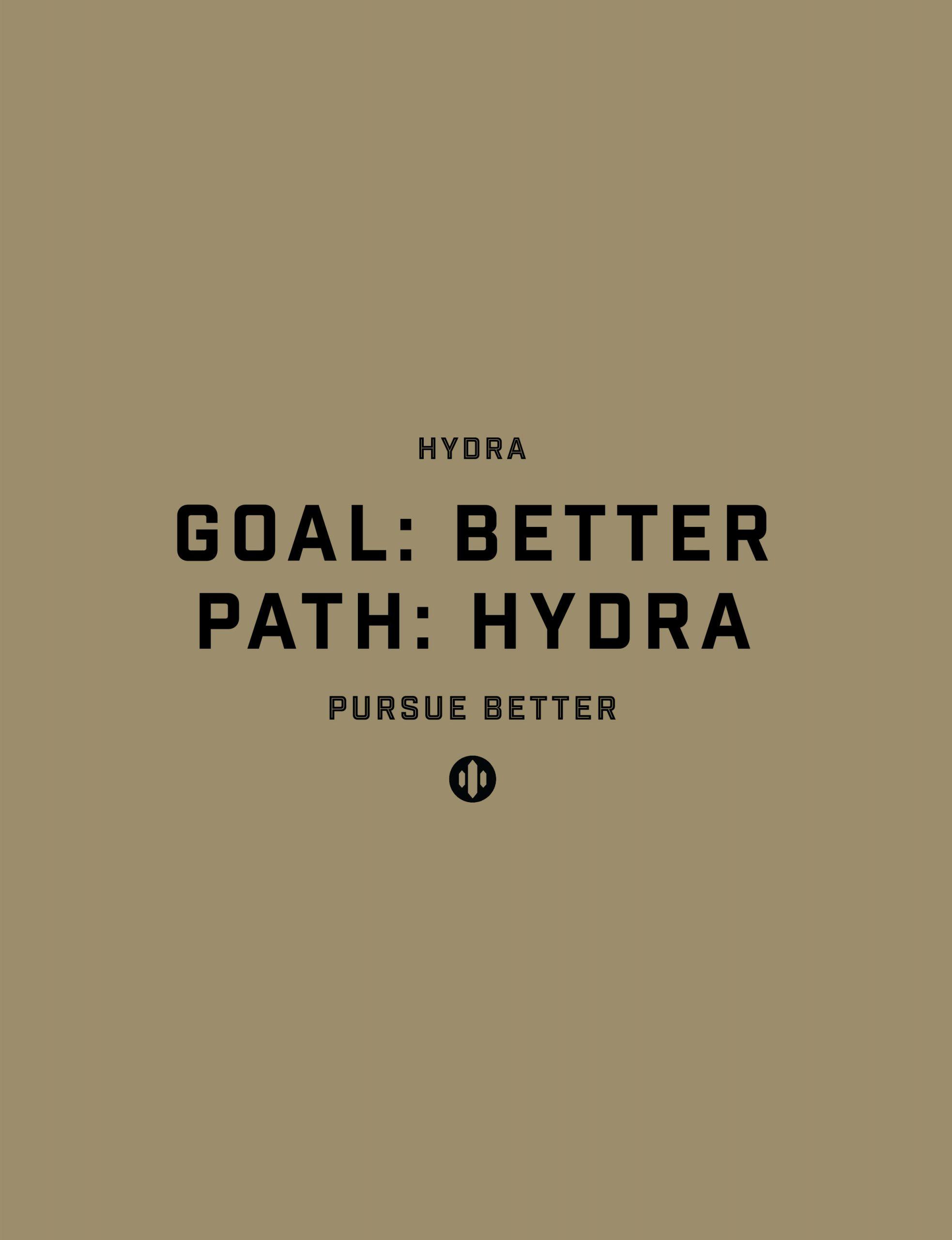Hydra-Branding_Portfolio_Portrait_03